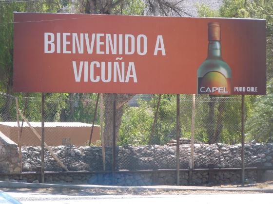 bienvenidos-a-vicuna
