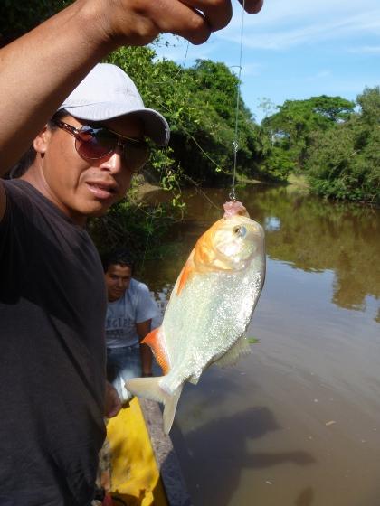 peche-au-piranhas-amazonie