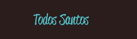 image-intro-blog-todos-santos